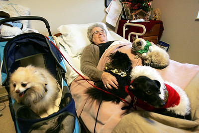 Monica Maschak - mmaschak@shawmedia.com Valley Hi resident Margaret Bosman smiles as she is humbled by the presence of the animals from the Assisi Animal Foundation on Tuesday, December 11, 2012.  The animals have been visiting the nursing home once a month for six years.