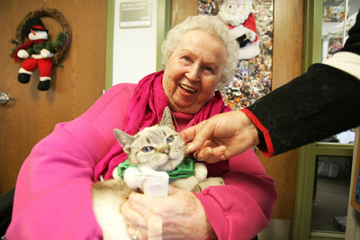 Monica Maschak - mmaschak@shawmedia.com Regina Stewart, a resident at Valley Hi nursing home, laughs as she holds Jasmine, a cat with the Assisi Animal Foundation on Tuesday, December 11, 2012.  The animals visit the nursing home once a months to provide animal-assisted therapy.