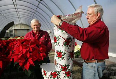 Monica Maschak - mmaschak@shawmedia.com James Riedl (left) and partner Richard Harms wrap poinsettias for delivery in their Countryside Flower Shop and Garden Center on Tuesday, December 11, 2012.  The co-owners have been chamber members for 30 years.