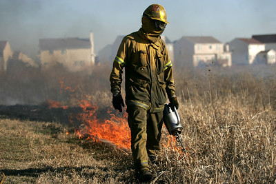 Monica Maschak - mmaschak@shawmedia.com A man ignites dried vegetation at the Meadowbrook wetland in Lake in the Hills on Friday, Decemeber 14, 2012.  V3 Companies performed the prescribed burn to maintain the natural area and reduce the amount of pesticides that would otherwise be used to control invasive plants.