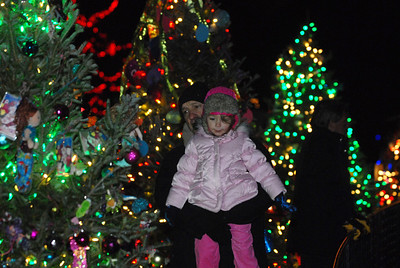 Bill Cartwright, of River Forest, holds up his granddaughter, Alaina Marino, 3, for a closer look at a Christmas tree during the Holiday Magic event at Brookfield Zoo on Saturday, Dec. 8, 2012. Staff photo by Matthew Piechalak