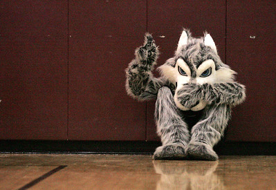 Monica Maschak - mmaschak@shawmedia.com The Prairie Ridge Wolf mascot hides against the wall as it watched the girls basketball team lose to Cary-Grove on Tuesday, November 4, 2012.