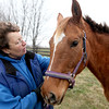 Sue Balla, who runs Casey's Safe Haven horse rescue at Field Of Dreams Farm, comforts Lola in a field on the Elburn property Tuesday. Lola was rescued from former owner Angela Beers.(Sandy Bressner photo)