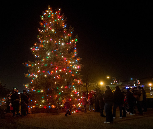 The Batavia Christmas tree at The Batavia Celebration of Lights Festival on The Batavia River Walk in Batavia, IL on Sunday, December 01, 2013 (Sean King for Shaw Media)