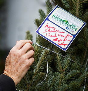 Kyle Grillot - kgrillot@shawmedia.com   Carol Richardson places tags on the  christmas trees donated to the Trees for Troops program. The Richardson's mission is to donate approximately 75 fresh-cut Christmas trees, which will be shipped to American military families at domestic and foreign bases worldwide. While thousands of trees donated to Trees for Troops are donated by American Christmas tree growers such as the Richardsons, individuals can support the program by making donations at participating tree farms or online.