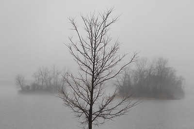 Sarah Nader- snader@shawmedia.com A dense fog is seen at Three Oaks Recreation Area in Crystal Lake Wednesday, December 4, 2013. The National Weather Service extended the dense fog advisory for McHenry County and the Chicago area till 6 p.m.