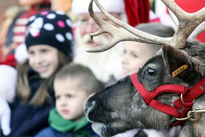 Jeff Krage – For Shaw Media A reindeer sneeks his head into the picture with Santa and children during Saturday's event at the Arboretum of South Barrington. South Barrington 11/30/13