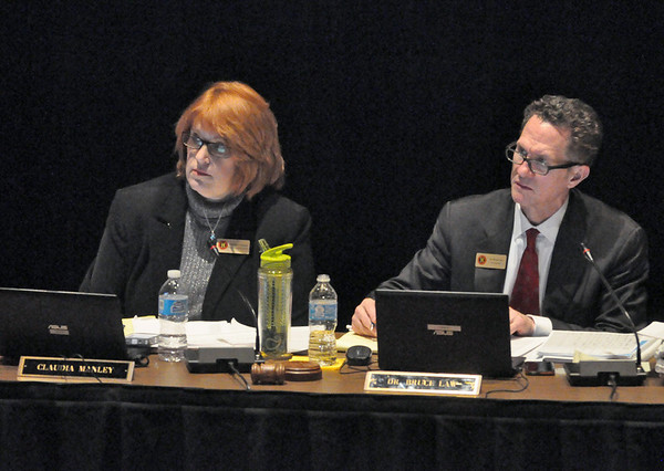 Hinsdale D86 considers zero tax hike