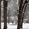 knews_thu_1208_ALL_SnowFeach4