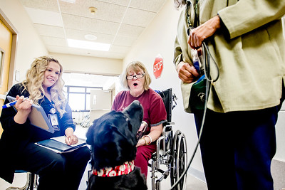 hnews_wed1221_therapy_dogs_04.jpg