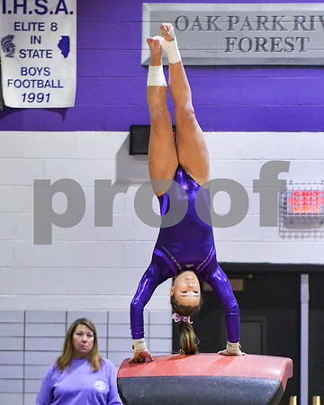 Downers Grove North, Downers Grove South, and LT girls gymnastics