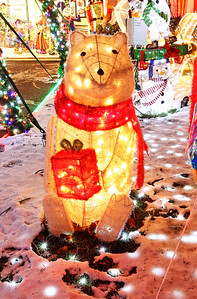 "Candace H. Johnson-For Shaw Media A polar bear shines bright in the front yard of the Herzog ""Christmas House""  in Round Lake.(12/15/17)"