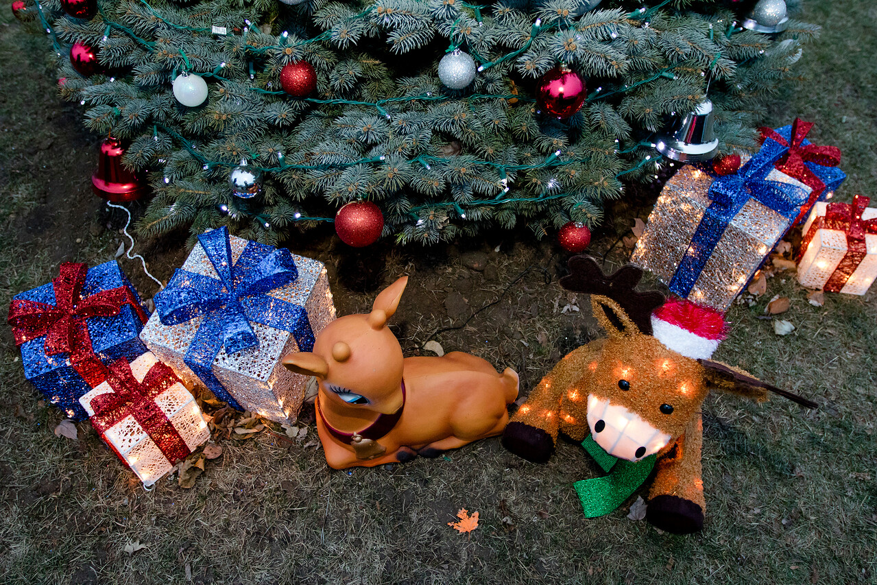 hstyle_adv_Marengo_Christmas_Tree_03.jpg