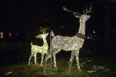 Over 200 lighted deer grace the homes of Ken Erikson and Peter Messman Thursday, December 6, 2018 in Bull Valley. The annual display grows in size every year and can been seen nightly along Bull Valley road. KKoontz – For Shaw Media