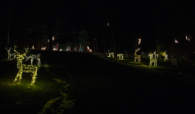 Lighted deer along Peter Messman's driveway light up Bull Valley Road Thursday, December 6, 2018 in Bull Valley. Messman has teamed up with Ken Erikson and has increased the number of lighted deer to over 200.  KKoontz- For Shaw Media
