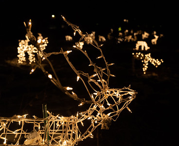 """Over 200 lighted deer can be seen along Bull Valley Road Thursday, December 6, 2018 in Bull Valley. Peter Messman, who lives across Bull Valley Road from the Eriksons, has joined in and has added to the famous """"White Deer Display"""" now illuminating both sides of the road. KKoontz – For Shaw Media"""