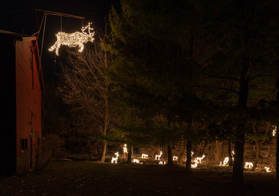 A custom made metal elk hangs in front of Ken Erikson's barn Thursday, December 6, 2018 in Bull Valley. Peter Messman has now joined forces with Erikson and there are now over 200 lighted deer that can be viewed along Bull Valley road during the holiday season. KKoontz – For Shaw Media