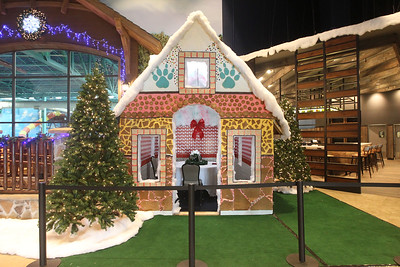 Candace H. Johnson-For Shaw Media Guests can make a reservation to eat in the gingerbread house during the month of December at the Great Wolf Lodge in Gurnee.
