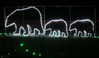Candace H. Johnson-For Shaw Media Polar bears light up at night during the Santa's Rock n Lights drive through Christmas light show at the Lake County Fairgrounds in Grayslake. Open every night through December 31st. Hours are Sunday through Thursday, 4:50-9:00 pm. and Friday and Saturday, 4:50-10:00 pm. (12/21/18)