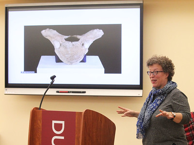 """Candace H. Johnson-For Shaw Media Debbie Fandrei, of Arlington Heights, museum curator, discusses the Mastodon Vertebrae found in 1966 in Antioch featured in the book, """"200 Objects That Made History in Lake and McHenry Counties,""""  during the Illinois Bicentennial celebration at the Bess Bower Dunn Museum in Libertyville. Free programs are offered at the Dunn Museum every 1st and 3rd Thursday evening. (12/20/18)"""