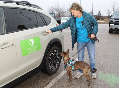 Candace H. Johnson-For Shaw Media Lisa Crowley, executive director and puppy raiser, with Canines 4 Comfort puts Ella, a one-and-a-half-year-old, rescue-mix into her car after walking her through Bass Pro Shops in Gurnee Mills to introduce new environments to the dog for desensitization.(12/9/19)