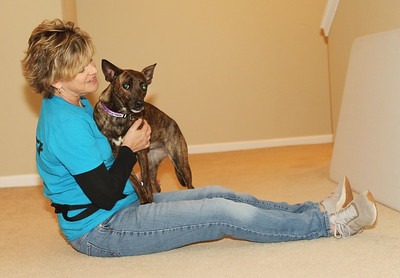Candace H. Johnson-For Shaw Media Lisa Crowley, executive director and puppy raiser, with Canines 4 Comfort works with Ella, a one-and-a half-year-old rescue-mix, on deep pressure therapy at her home in Grayslake.(12/9/19)