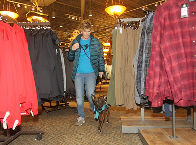 Candace H. Johnson-For Shaw Media Lisa Crowley, executive director and puppy raiser, with Canines 4 Comfort walks Ella, a one-and-a-half-year-old, rescue-mix through Bass Pro Shops in Gurnee Mills to introduce new environments to the dog for desensitization.(12/9/19)