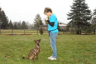 Candace H. Johnson-For Shaw Media Lisa Crowley, executive director and puppy raiser, with Canines 4 Comfort works with Ella, a one-and-a-half-year-old rescue-mix, on basic commands in the backyard of her home in Grayslake.(12/9/19)