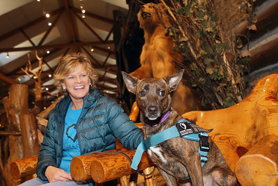 Candace H. Johnson-For Shaw Media Lisa Crowley, executive director and puppy raiser, with Canines 4 Comfort sits with Ella, a one-and a half-year-old, rescue-mix as she wears her Service Dog in Training vest at Bass Pro Shops in Gurnee Mills. Crowley walked Ella throughout the store to introduce new environments to the dog for desensitization.(12/9/19)