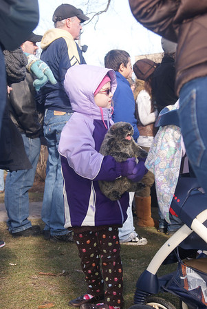 "Yadira Sanchez Olson - For the Northwest Herald MiaBella Carzoli, 5, holds on to a stuffed groundhog during the ""Groundhog Day"" walking tour at the Woodstock Square on Saturday, February 4."
