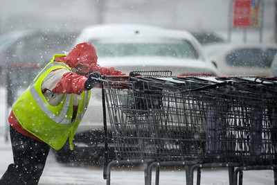 Daniel J. Murphy - dmurphy@shawmedia.com  Amy Rishleng of Wonder Lake pushes grocery carts in the blowing snow at Jewel Osco Friday February 10, 2012 in Cary.