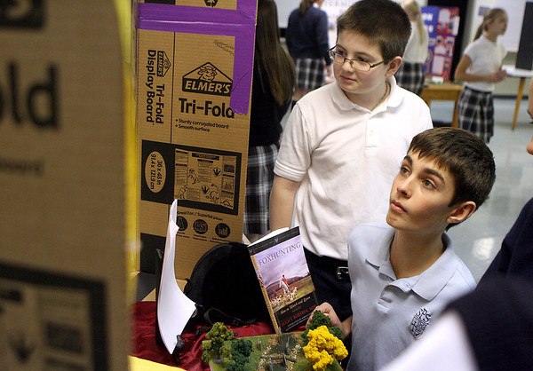 Sandy Bressner - sbressner@shawmedia.com<br /> St. Peter School seventh graders Riley Zimmer (left) and Charlie Zimmer check out a classmate's project during a history fair at the Geneva school Friday.