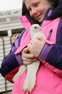 Sarah Nader - snader@shawmedia.com Isabella Saxelby, 9, of Johnsburg gets ready to release a dove while the animals of the Bible Petting Zoo visited the St. Patrick Roman Catholic Church in McHenry on Saturday, February 16, 2013. The petting zoo included sheep, goats, alpacas, a donkey, doves and chickens.