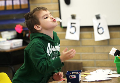 Monica Maschak - mmaschak@shawmedia.com Kindergartener Nathan Sowa plays with a feather while he makes a chicken craft at Locust Elementary School on Friday, February 22, 2013. Students spent the day learning about a shrinking culture of farming with field trips to local farms and fun farm activities.