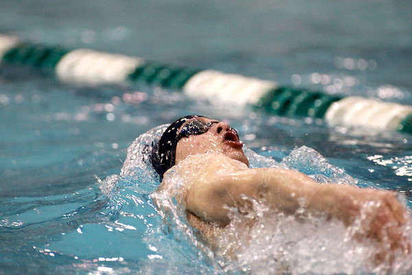 Michael Hamann of the Cary-Grove co-op team swims the 200 Individual Medley during the IHSA Boys Swimming and Diving preliminaries Friday at New Trier High School.