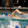 Warren Melton of Newman Central Catholic swims the 200-yard freestyle during the IHSA Boys Swimming and Diving preliminaries Friday at New Trier High School.