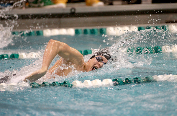 Alex Reinbrecht swims the 200-yard freestyle during the IHSA Boys Swimming and Diving preliminaries Friday at New Trier High School.