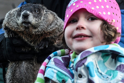 Sarah Nader- snader@shawmedia.com Woodstock Willie poses for a photo with Lily O'Malley, 5, of Park Ridge Sunday morning on the Woodstock Square after the Groundhog Day Prognostication February 2, 2014. Willie prognosticated six more weeks of winter after seeing his shadow.