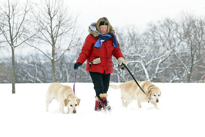 H. Rick Bamman - hbamman@shawmedia.com Pam Meyer strolls with Nora and Jersey in Hill Climb Park Monday following the snow fall. Overall, the McHenry County area received between 3 and 3.5 inches of snow, a spokesman for the weather service said. Tuesday is expected to be mostly cloudy with a bit of snow, accumulating a coating to an inch according to AccuWeather.com