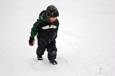 Sarah Nader - snader@shawmedia.com George Niespodzianski, 2, of Woodstock catches snowflakes in his mouth while sledding with his family at Emricson Park in Woodstock on Thursday, February 7, 2013. Accumulation of 4 to 8 inches was expected to fall on McHenry County.