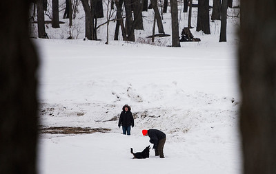 Kyle Grillot - kgrillot@shawmedia.com   Margie Wood watches as Greg Adams plays with his dog Buddy while hiking at Veterans Acres Park Thursday in Crystal Lake.