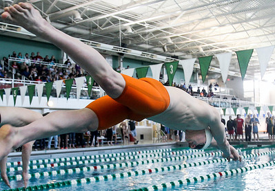 Sarah Nader- snader@shawmedia.com Cary-Grove's Adam Eibel dives into the the pool while competing in the 200 years IM final  during Saturday's swimming sectional at Stevenson High School February 22, 2014.