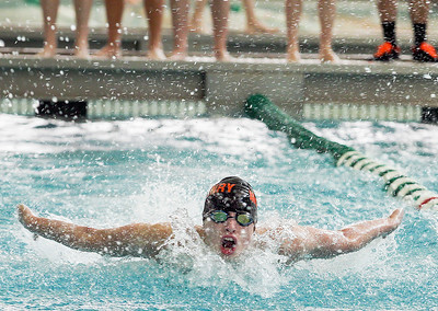 Sarah Nader- snader@shawmedia.com McHenry's Trey Schopen  competes in the 100 yard butterfly during Saturday's swimming sectional at Stevenson High School February 22, 2014.