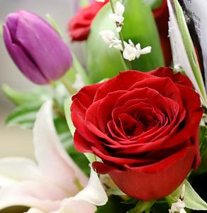 hsprts_sun0214_Periwinkle_Florist_03