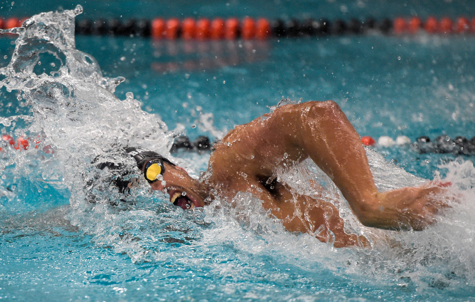 Omid Babakhani of Cary-Grove co-op swim team swims in the 200 yard freestyle relay on Thursday, Feb. 2, 2017.