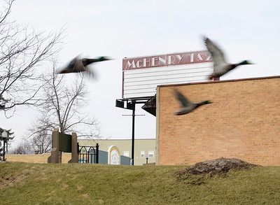 Ducks fly by the downtown theater in McHenry on Monday, Feb. 6, 2017.  A recent request has been made for a permit to expand the theater and to an a restaurant serving alcohol and outdoor seating has been made.