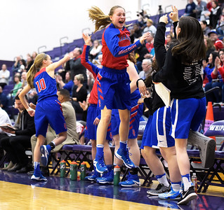 Dundee-Crown freshman Cassidy Randl (cq) cheers after teammate Allison Michalski, not pictured, scores a basket Monday, Feb. 20, 2017, during the class 4A Hampshire Sectional semifinal against Rockford Boylan. Rockford Boylan won 47-37.