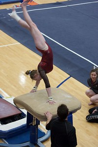 Prairie Ridge's Katie McEnery competes in the vault event on Feb 7 at Hoffman Estates Sectional.