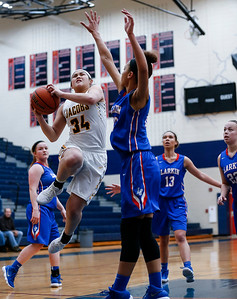 Kyra Cabusao (34) from Jacobs drives to the basket on Aaliyah Dixon (23) from Larkin in the fourth quarter during the Class 4A South Elgin Regional play-in game on Monday, February 12, 2018 in South Elgin, Illinois. The Royals defeated the Golden Eagles 39-44. John Konstantaras photo for Shaw Media
