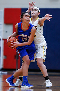 Kyra Cabusao (34) from Jacobs defends Brianna Young (13) from Larkin in the second quarter during the Class 4A South Elgin Regional play-in game on Monday, February 12, 2018 in South Elgin, Illinois. The Royals defeated the Golden Eagles 39-44. John Konstantaras photo for Shaw Media